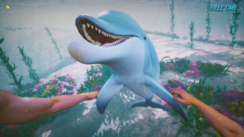 《Dolphin Trainer VR》可进行虚拟海豚训练与营救