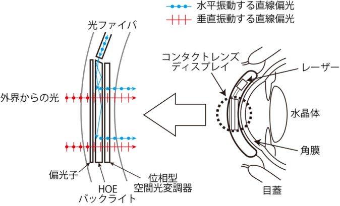 """日本东京农工大学开发AR""""智能隐形眼镜"""""""